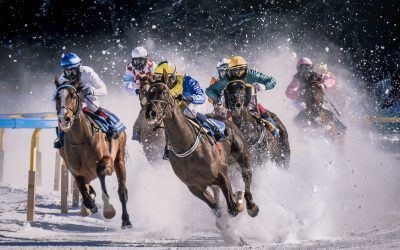 The different types of Horse Racing